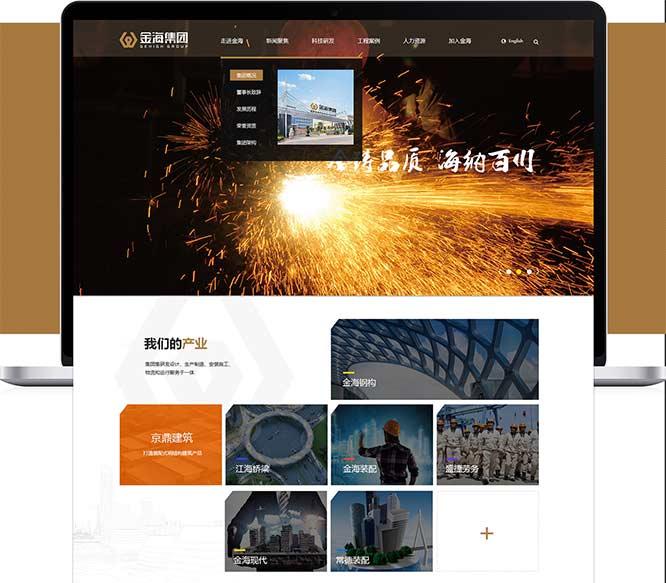 深圳布吉24号网页网站制作案例