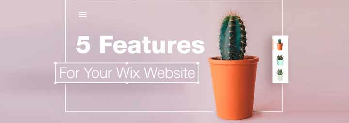 网站建设问题网站上需要5个特征