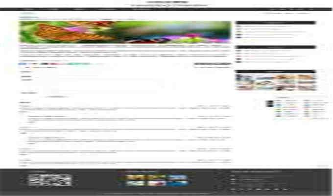 怎么启动网站营销的终极指南
