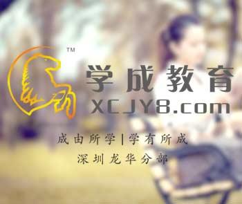 深圳学成教育网站制作